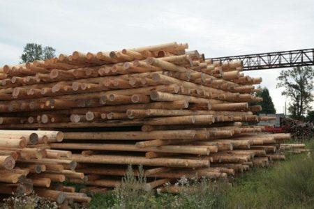 Атмосферная сушка древесины на прокладках бревен