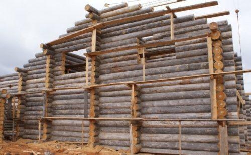 Влажность сухостойной древесины
